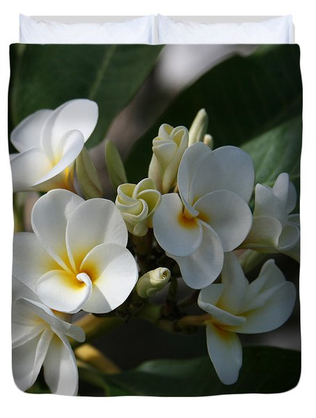 Pua Melia Na Puakea Onaona Tropical Plumeria Duvet Cover