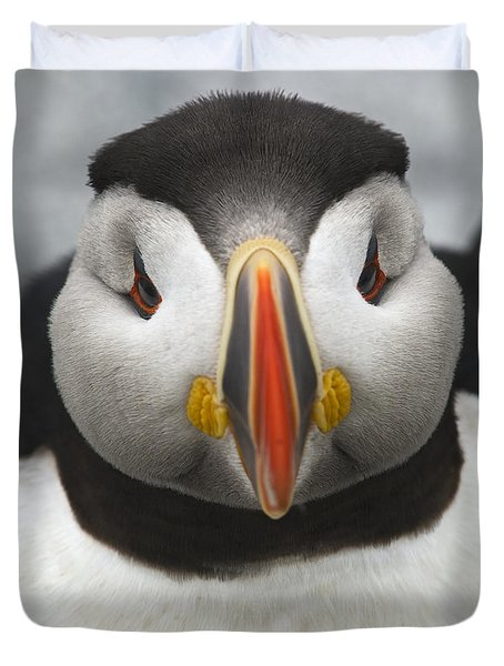 Puffin It Up... Duvet Cover