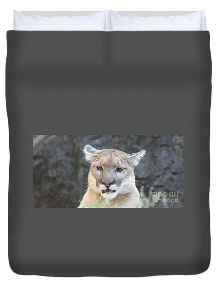 Puma Head Shot Duvet Cover by John Telfer