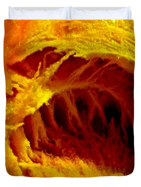 Pumpkin Cave Duvet Cover by Marc Philippe Joly