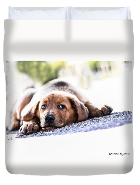 Duvet Cover featuring the photograph Puppet Dog by Stwayne Keubrick