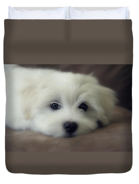 Puppy Eyes Duvet Cover