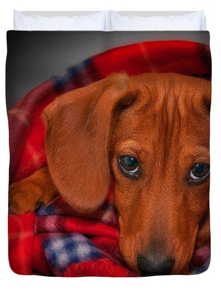 Puppy Love Duvet Cover by Susan Candelario