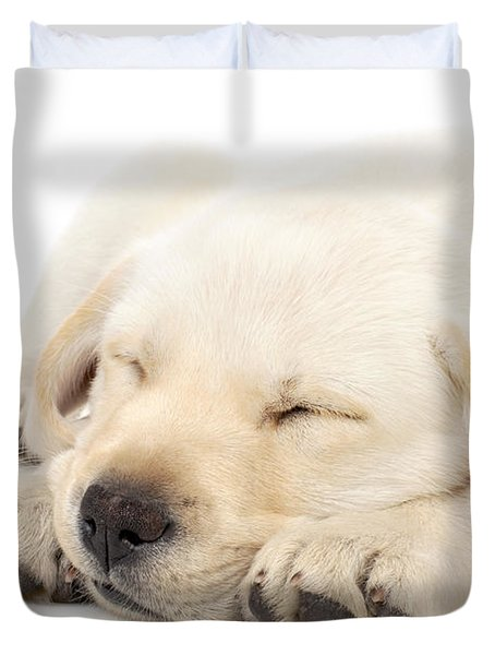 Puppy Sleeping On Paws Duvet Cover