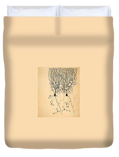 Purkinje Cells By Cajal 1899 Duvet Cover
