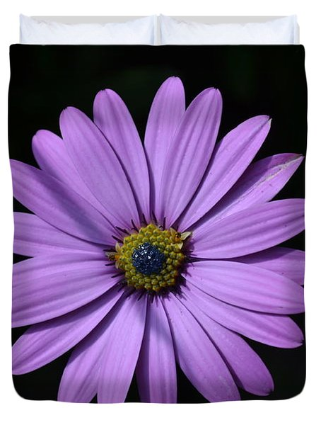 Purple African Daisy Duvet Cover