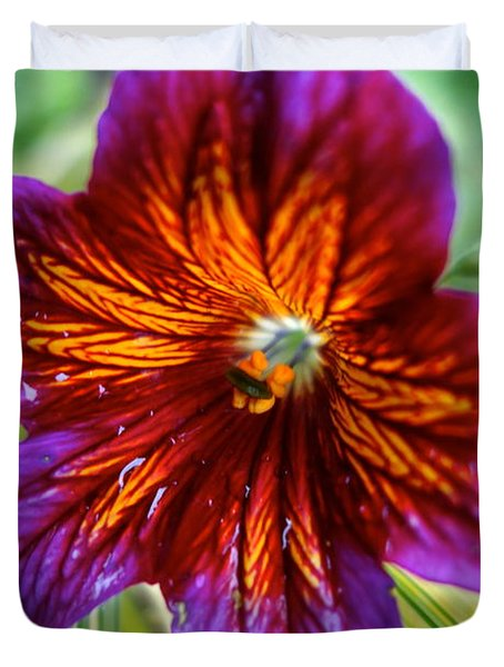 Purple And Orange Duvet Cover by Jacqueline Athmann