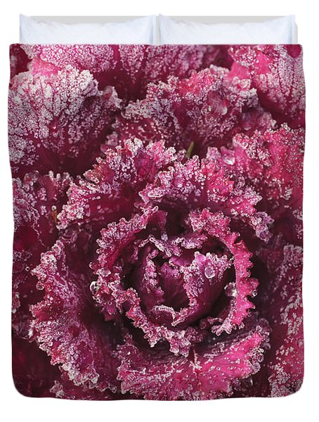 Purple Cabbage On A Frosty Morning Mill Duvet Cover by Stuart Westmorland