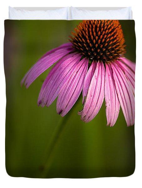 Purple Cone Flower Portrait Duvet Cover by  Onyonet  Photo Studios