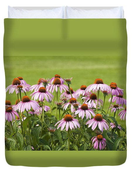 Purple Cone Flowers Duvet Cover