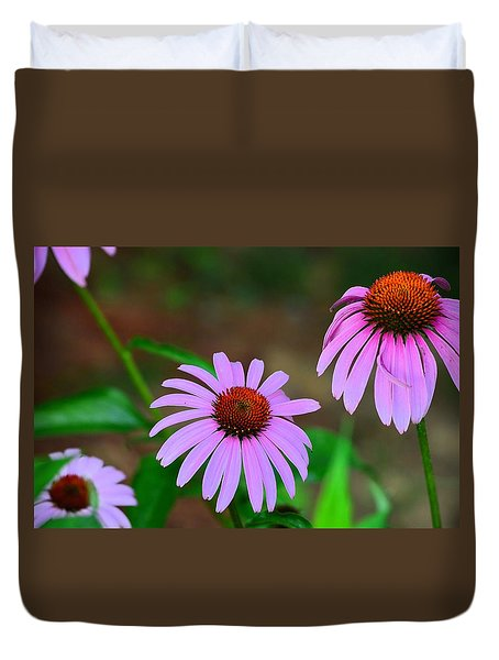 Purple Coneflower - Echinacea Duvet Cover