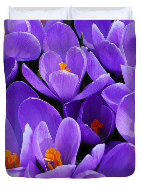 Purple Crocus Duvet Cover by Elena Elisseeva