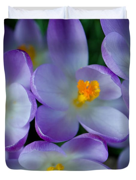 Purple Crocus Gems Duvet Cover