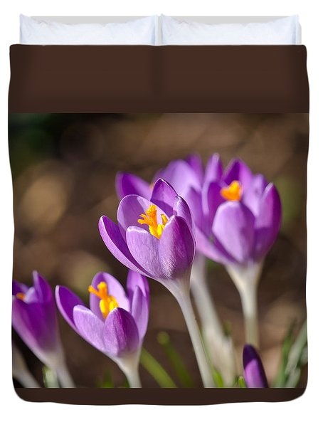 Purple Crocus Duvet Cover by Scott Carruthers