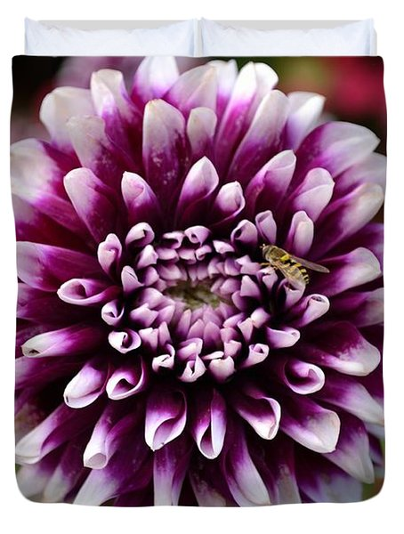 Purple Dahlia White Tips Duvet Cover