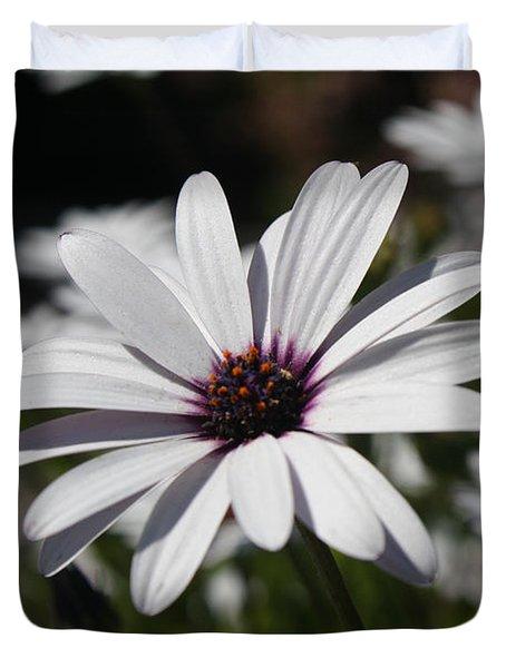 Purple Daisies 2 Duvet Cover