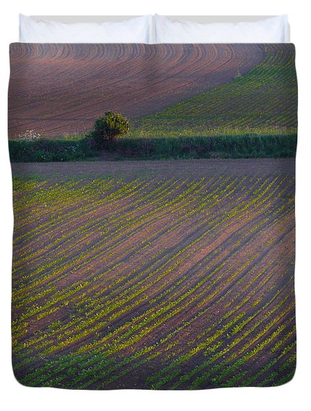 Purple Fields Duvet Cover by Evelyn Tambour