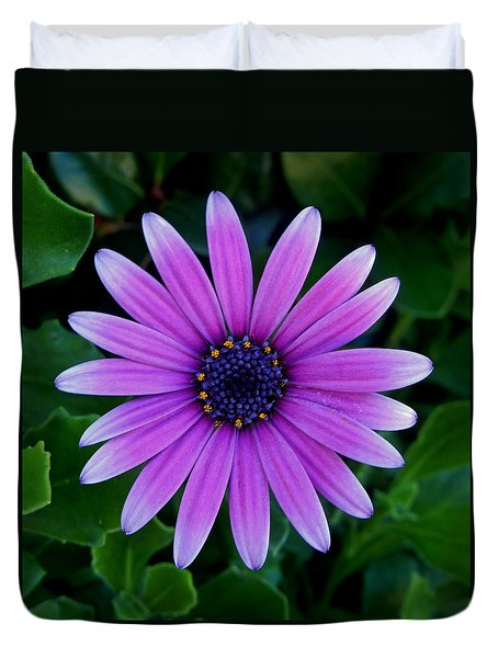Purple Flower Duvet Cover by Pamela Walton