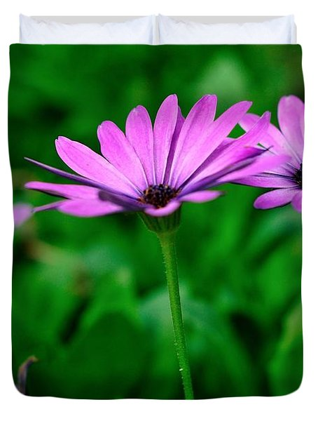 Duvet Cover featuring the photograph Purple Flowers by Joe  Ng
