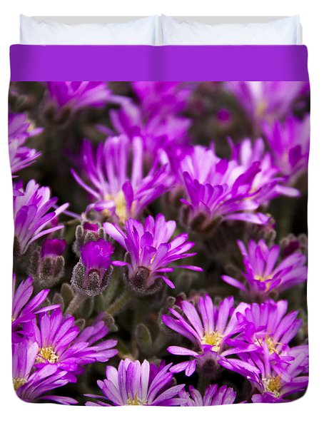 Duvet Cover featuring the photograph Purple Flowers by Raffaella Lunelli