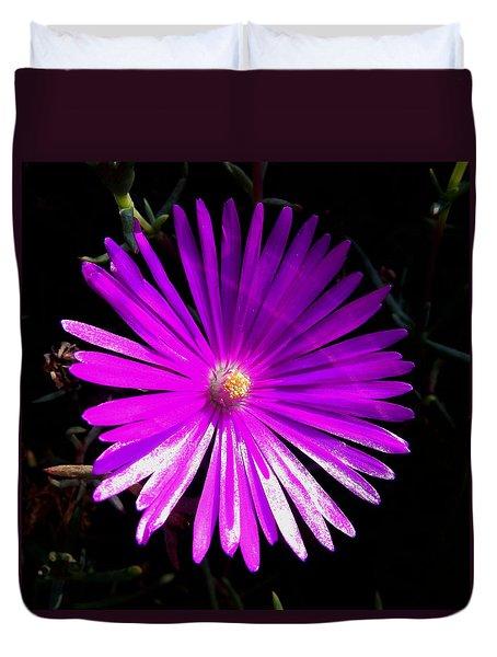 Purple Glow Duvet Cover by Pamela Walton
