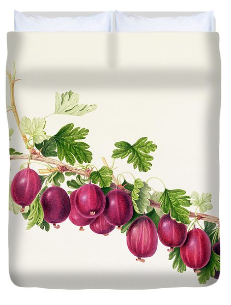Purple Gooseberry Duvet Cover