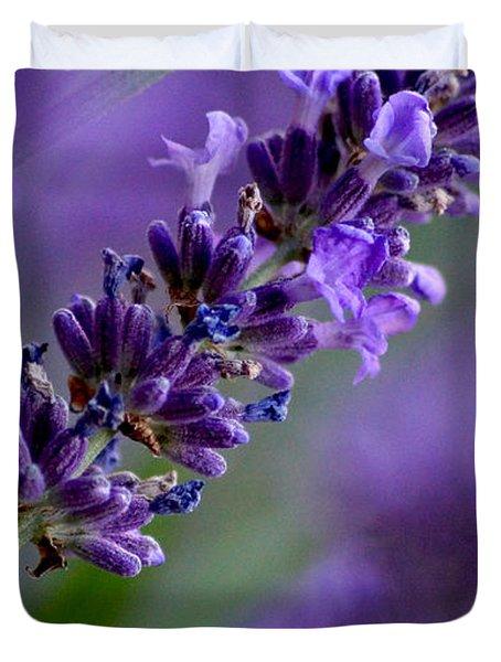 Purple Nature - Lavender Lavandula Duvet Cover
