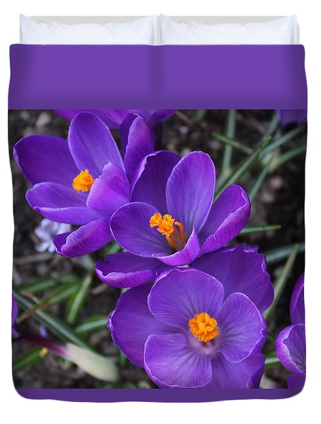Duvet Cover featuring the photograph Purple Passion by Judy Palkimas