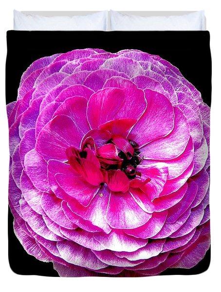 Purple Ranunculus Duvet Cover by Rose Santuci-Sofranko