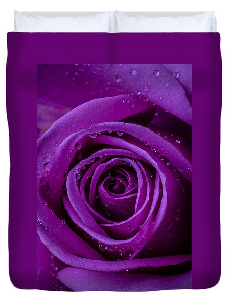 Purple Rose Close Up Duvet Cover by Garry Gay