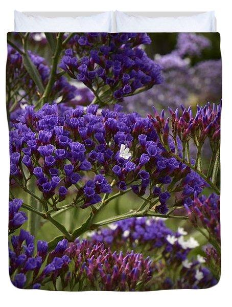 Purple Statice  Duvet Cover