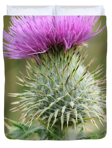 Duvet Cover featuring the photograph Purple Thistle by Jeremy Voisey