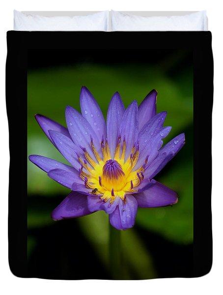Purple Water Lily Duvet Cover by Pamela Walton