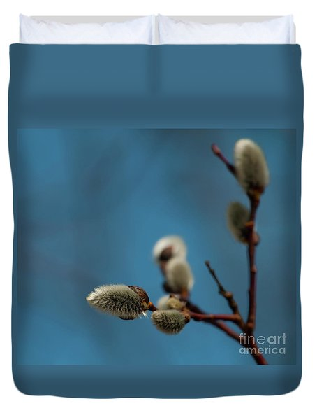 Pussy Willow... Duvet Cover