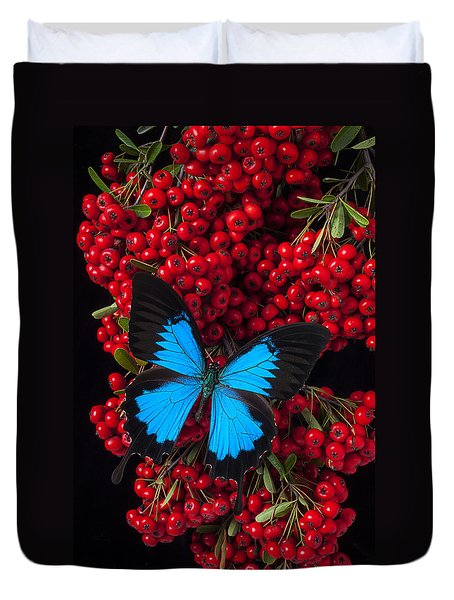 Pyracantha And Butterfly Duvet Cover by Garry Gay