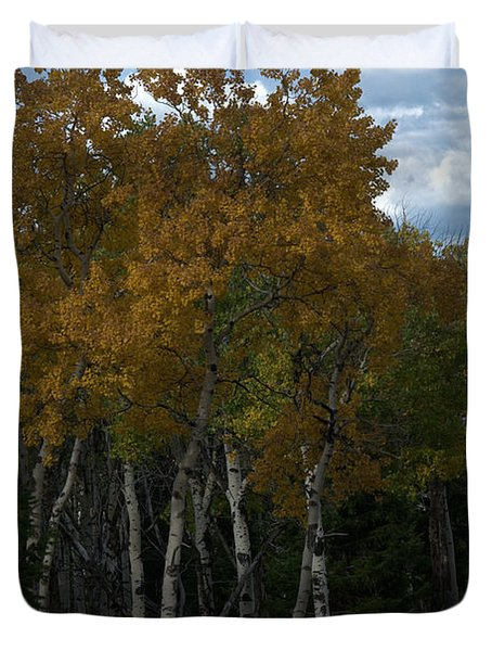 Quaking Aspen Duvet Cover
