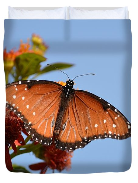 Queen Butterfly Duvet Cover by Debra Martz