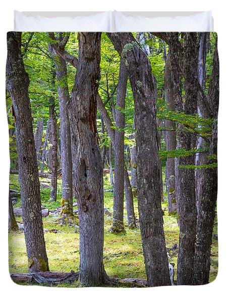 Quiet Forest Duvet Cover