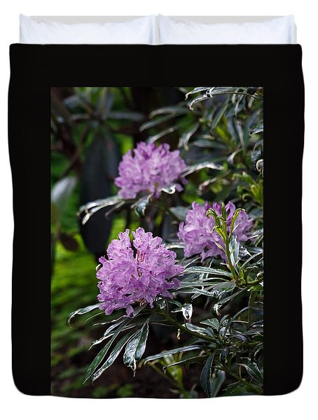 R. Ponticum Variegatum Duvet Cover by Chris Anderson