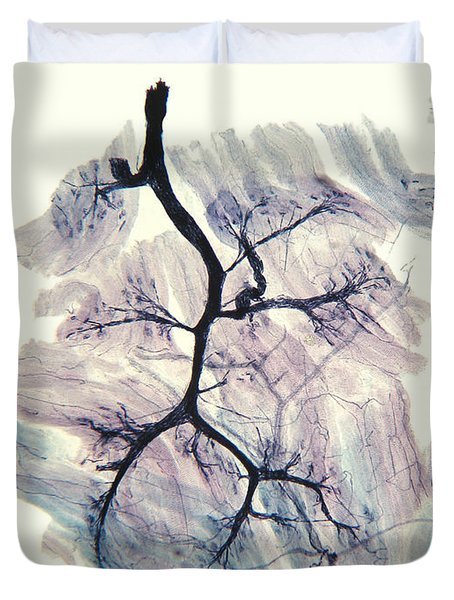 Rabbit Neuron Nerve Ending Lm Duvet Cover
