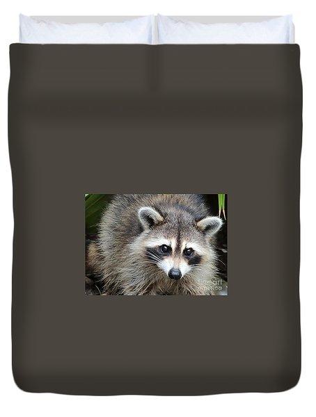 Raccoon Eyes Duvet Cover by Carol Groenen