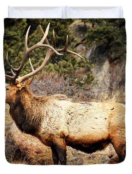 Rack Of Elk Duvet Cover