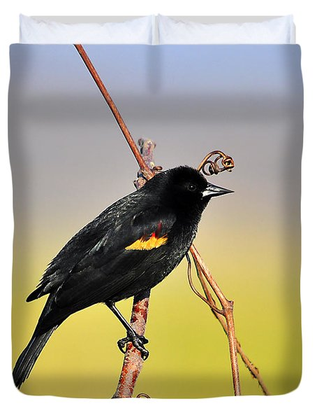 Radiant Red-winged Duvet Cover by Al Powell Photography USA