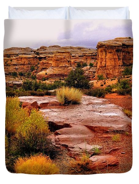 Rain At The Needles District 2 Duvet Cover by Marty Koch