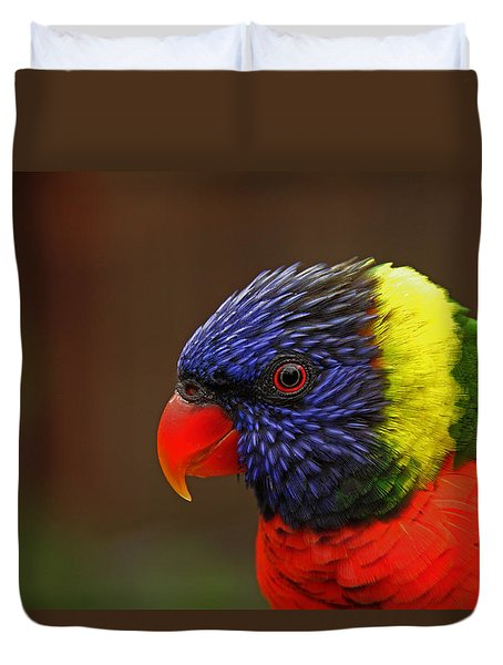 Rainbow Lorikeet Duvet Cover by Andy Lawless