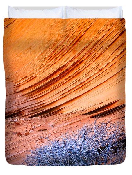 Rainbow Rocks Dead Bush #1 Duvet Cover