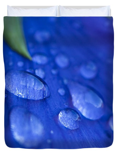Raindrop Pansy Duvet Cover by Anne Gilbert