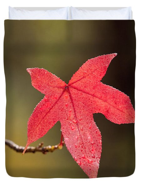 Raindrops On Red Fall Leaf Duvet Cover by Michelle Wrighton
