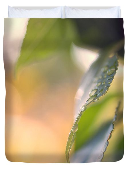 Raindrops Three Duvet Cover by Bob Orsillo