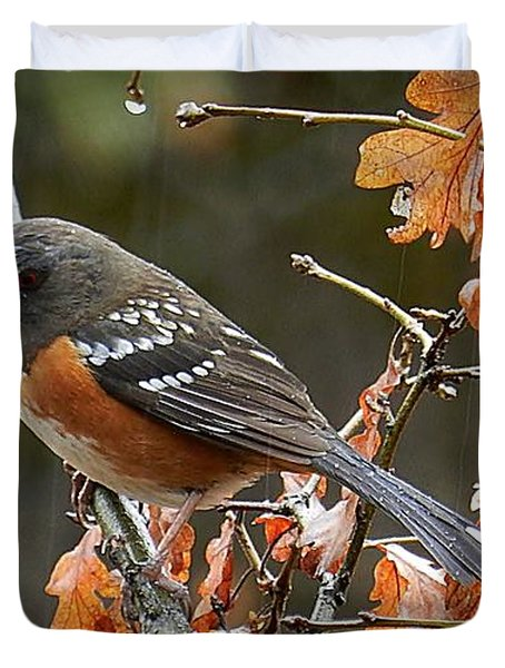 Duvet Cover featuring the photograph Rainy Spotted Towhee by Julia Hassett